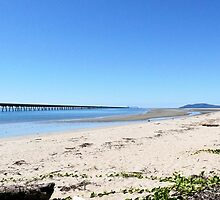 Lucinda Beach, Far North Queensland by elsha