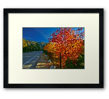 Fall On A High Country Road Framed Print