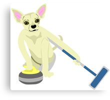 Chihuahua Curling Canvas Print