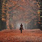 Riding in the magic of late autumn by jchanders