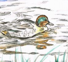 Duck's Reflection Sticker
