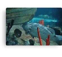 Sydney Aquarium Canvas Print