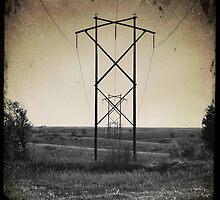 Powerline Perspective by Robert Baker