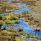 Blue meandering stream in the mountains by Ann Reece