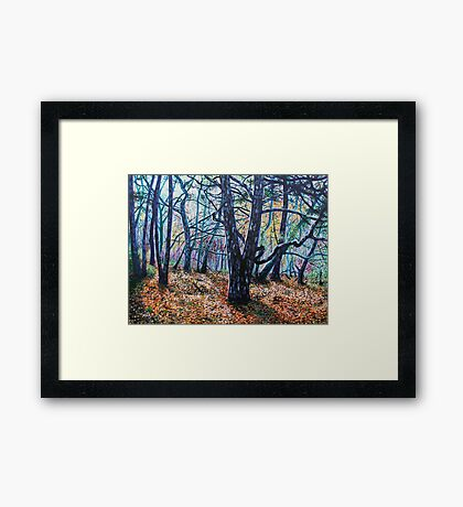 'Woods (A Clearing)' Framed Print
