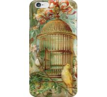 Large Gilded Gold Victorian Bird Cage iPhone Case/Skin