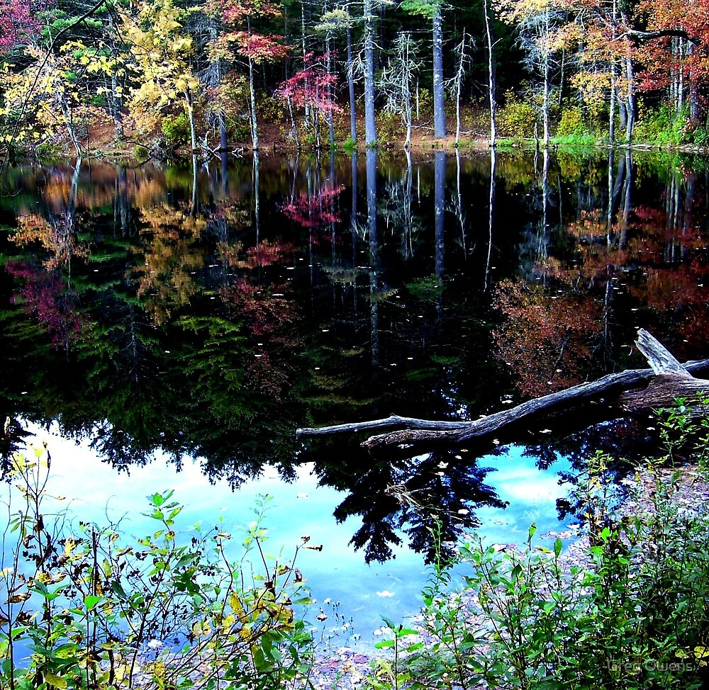 Fallback at Fisherville by Greg Owens