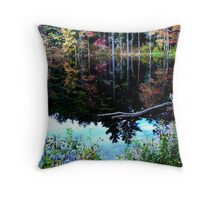Fallback at Fisherville Throw Pillow