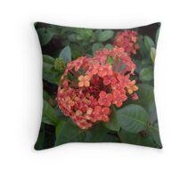 Brazilian Flower Throw Pillow