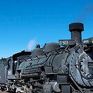Steam engine train tour by Ann Reece