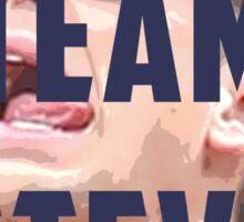 Team Steve Sticker