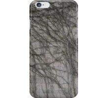 Vitality 1 iPhone Case/Skin