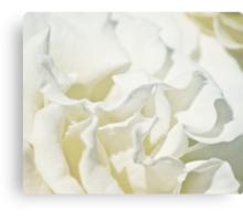 Vanilla Malt Canvas Print