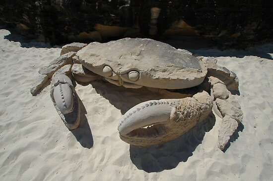 Crab @ Sculptures By The Sea 2010 by muz2142