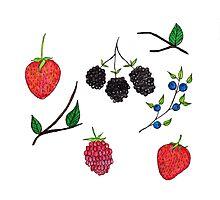Berrys Berries Photographic Print