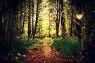 A rural walk by Joshua Greiner