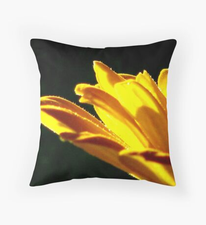Glimmering Throw Pillow