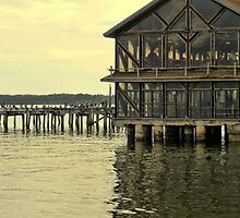Seabreeze and Pier ~ Cedar Key, Florida  by AuntDot