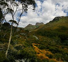 Cradle Mountain, Tasmania by Andrew Wallace