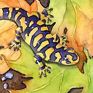 Tiger Salamander by Greg  Marquez