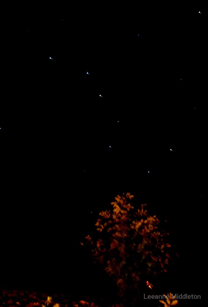 big dipper by Leeanne Middleton