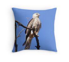 Whistling Kite - Bird & Animal Sanctuary, Lake Cargelligo, NSW Throw Pillow