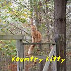 Kountry Kitty by DebbieCHayes