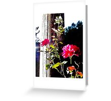 Charged Roses Greeting Card