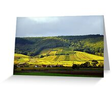 On the Road: Vineyards in France Greeting Card