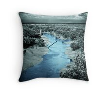 Colour of the Deep Creek Throw Pillow