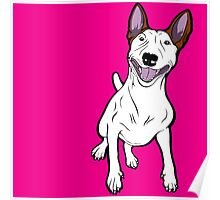 Excited Bull Terrier  Poster