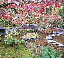 Fall Beauty in Victoria by Judy Grant