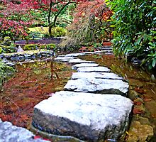 Ground View in The Butchart Garden by Judy Grant