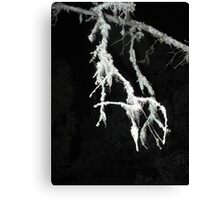 Swinging Ghost Canvas Print