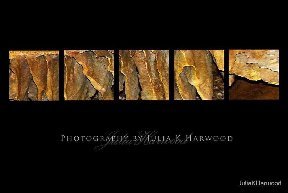 Honeycomb  ~ Signature Series by Julia Harwood