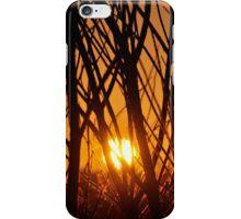 Branches Sunrise - Busselton, Western Australia iPhone Case/Skin