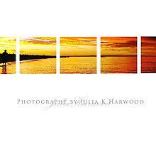 Sunset ~ Signature Series by Julia Harwood