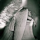 Weeping Angel by Susan Grissom