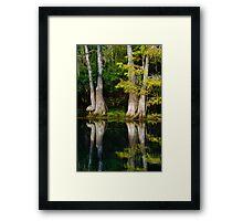 Pastoral Reflections Framed Print