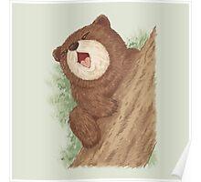 Bear on tree Poster