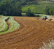Harrowing the fields at Peyrefitte by Duncan Cunningham