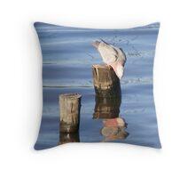 Galah - Lake Curlew Throw Pillow