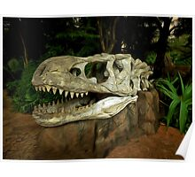 Out-Distancing Dinosaurs Poster