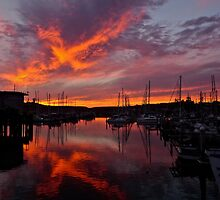 Pillar Point Harbor, Half Moon Bay, California by Scott Johnson