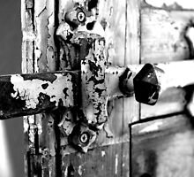 Door History by Jo  Young