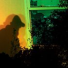 Camera phone blends: The Urban Jungle Burglar by Christopher Nicola