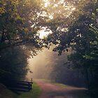 First steps in autumn by Alain Baumgarten