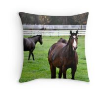Horse Visitors Throw Pillow