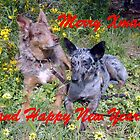 Chauncey & Annie Merry Xmas by Koolie Club  of Australia