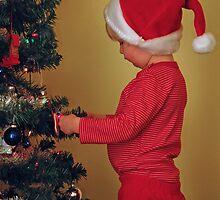 Santa's Helper by Debbie West